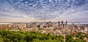 Montreal day cut sized